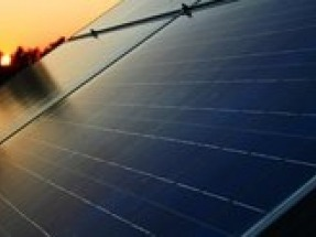 Adani Group unveils 100 MW solar plant in Bathinda, Punjab