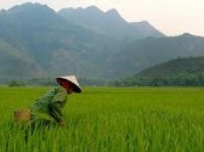 Vestas develops wind energy solution for 50 MW intertidal project in Vietnam