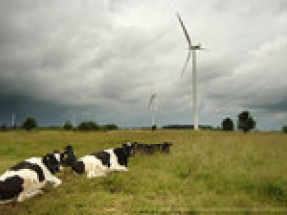 NTR plc announces commitments for NTR Renewable Energy Income Fund II
