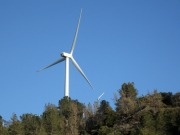 Green groups react to UK opposition to new renewables target