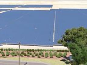 Lightsource bp Starts Construction on California Pollinator Friendly Solar Farm