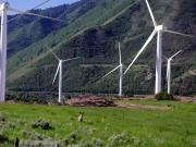 IKEA makes first US wind farm investment