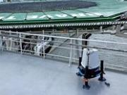 ZephIR Lidar to assist safe lifting on jack-up vessel Brave Tern at Block Island Wind Farm