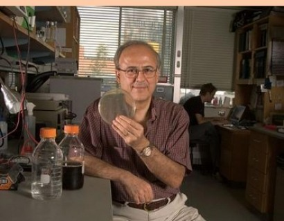 MIT researchers engineer cells for more efficient biofuel production