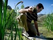 EU Sets Biofuel Sustainability Standards