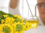 Biofuels spending close to $50 billion in 2011