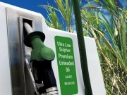 EU-produced ethanol keeps petrol prices down