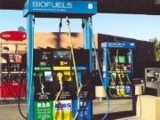 EPA strikes deal on biofuel blending targets