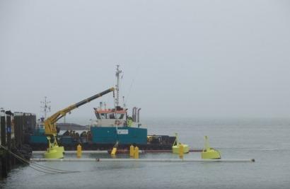 Offshore wind farms = seaweed = biofuel
