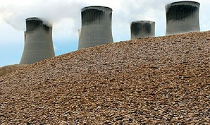 Biomass - Green light for two new biomass plants totalling