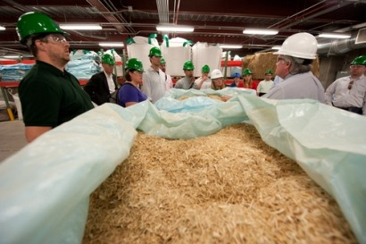 Report says biomass can be a key to meeting the UK