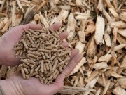 Los pellets ya tienen su certificación de calidad