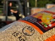 New funding conditions strengthen the German pellet market