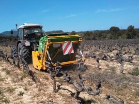 El Penedès, referente del vino y de la biomasa de la vid