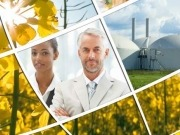 Taking a look at sustainability certification for biofuels