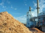 Vega Biofuels to provide European power companies samples for testing