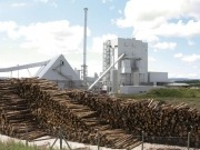 Report sees biomass plants flourishing in post-subsidy Europe