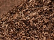 District heating company calls for an end to inefficient use of biomass in conventional power stations