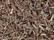 Biotricity, secures agreement on feedstock supplies for biomass plant in Irish midlands