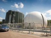 Kitchen scraps and animal waste fuel green power boom