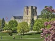 Two Virginia Tech geneticists share $1.4 million biomass grant