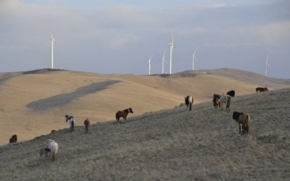 Mongolia joins the wind energy revolution