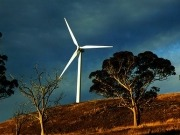 Ralls Corp. Sues Obama Over Blocked Chinese Wind Farm