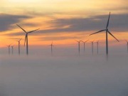 Condors and wind turbines: Green-vs-green conflict revisited