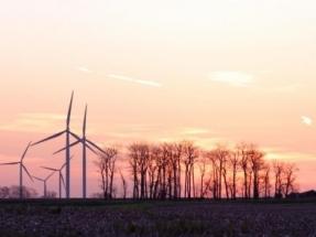 Adjudican 600 megavatios eólicos a una media de 25 euros por megavatio hora