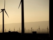 Egypt poised to launch tender offer for wind farms