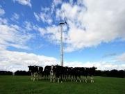 Record 200 Small Wind Turbine Order for Gaia-Wind