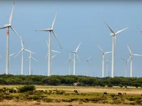Yucatán: Inauguran el parque eólico Dzilam Bravo, de 70 MW, el primero del estado