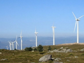 Spanish wind energy sector confident after successful tender
