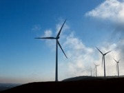 Vestas, Suzlon and Acciona: winners in South Africa