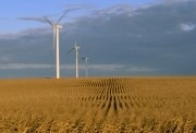 Global wind capacity could rise to 1,500 GW by 2020