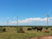 EDF Renewable Energy project begins operation in Texas