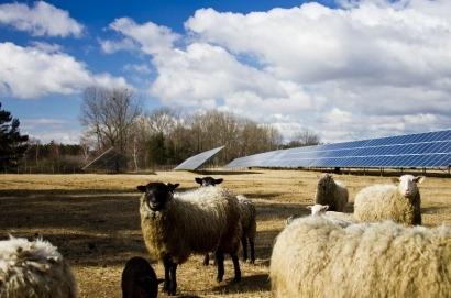 Solar Farms – A Taxing Problem for Farmers?