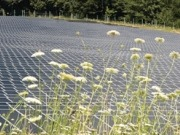 Top 5 predictions for Indian solar PV for rest of 2012