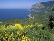 New solar plant in Crimea part of national clean energy strategy