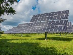 La española Grenergy vende a la canadiense CarbonFree un proyecto para construir 30 MW fotovoltaicos
