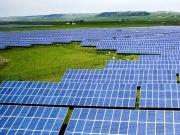 Yingli Green Energy supplies solar panels to Serbia