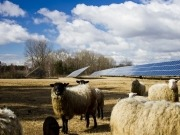 Solar Farms – A Taxing Problem for Farmers?