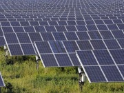 Trade association says solar power and farming go hand in hand
