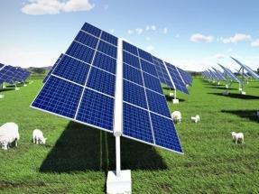 Mugga Lane Solar Park opens in Australia