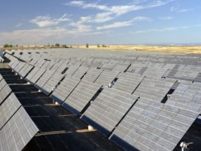Revealing the Sunny Side of Solar and Other Renewables to Achieve Success