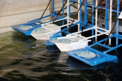 Black Sea hosts Israeli firm's first Eco Wave Power device