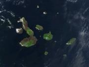 Ecuador: Galápagos: Siemens desarrolla en isla Isabela un sistema que une fotovoltaica, biodiésel y almacenamiento