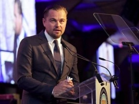 Leonardo DiCaprio latest to make case to Trump about green jobs, renewables