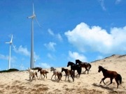 UN Report: Major milestones reached on renewable energy investments