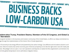 300 Businesses Urge Trump to Stand by Renewables, Climate Deal